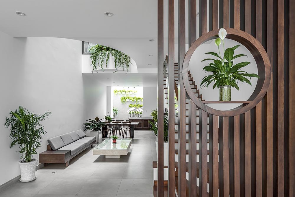 Những chậu cảnh xanh mướt nổi bật trên nền tường trắng, trở thành điểm nhấn trang trí sinh động cho không gian sống.