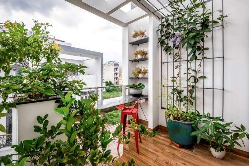 Bên cạnh đó, một góc nhà còn được trồng nhiều loại cây, hoa giúp không khí trong nhà dịu mát hơn-2
